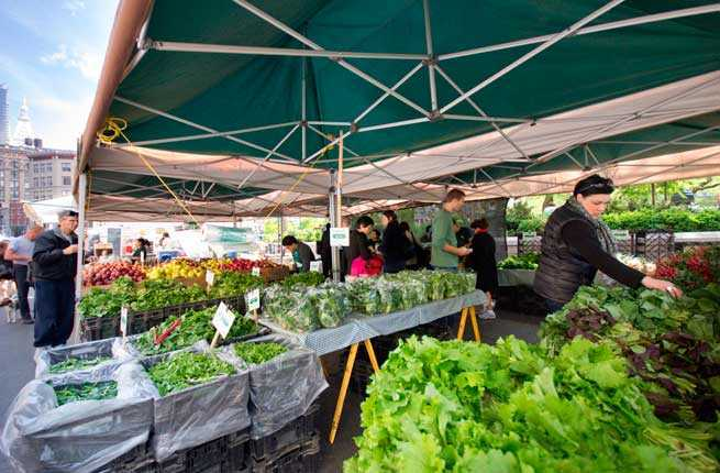 South Madison Farmers Market Has New >> America S 15 Best Farmers Markets Fodors Travel Guide