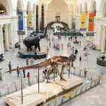 World's Best Spots for Dinosaur Fans