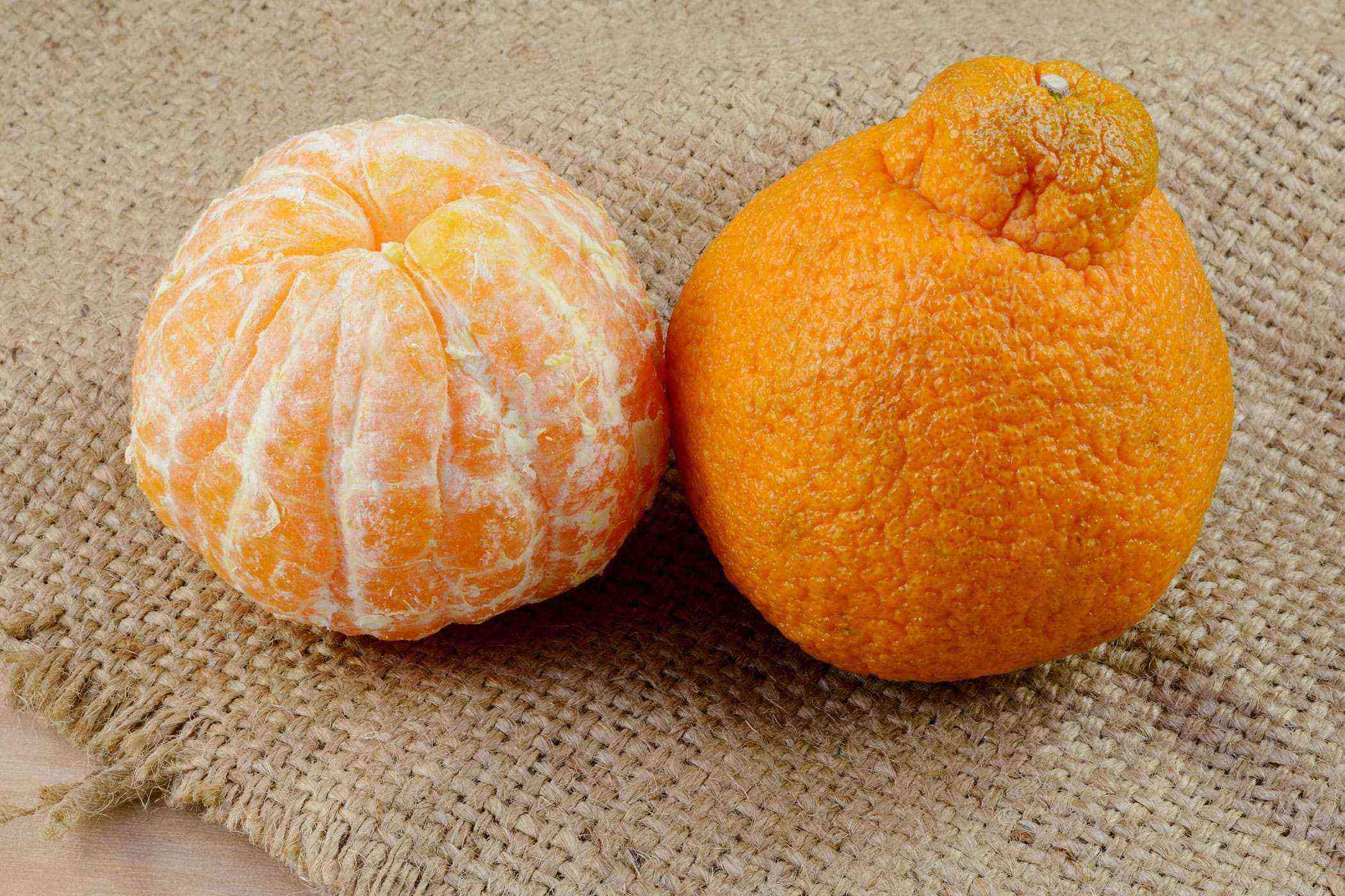 Jeju-Island-Hallabong-Mandarin-Oranges