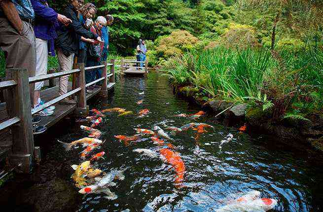 Long weekend in portland oregon fodors travel guide for Portland japanese garden free day