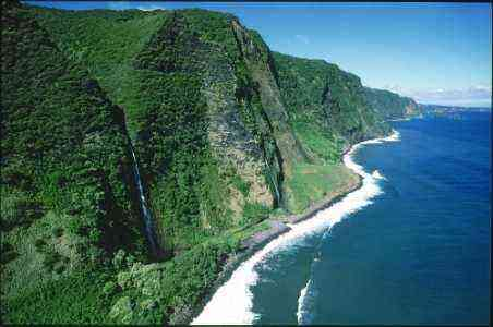 Big Island Foodie