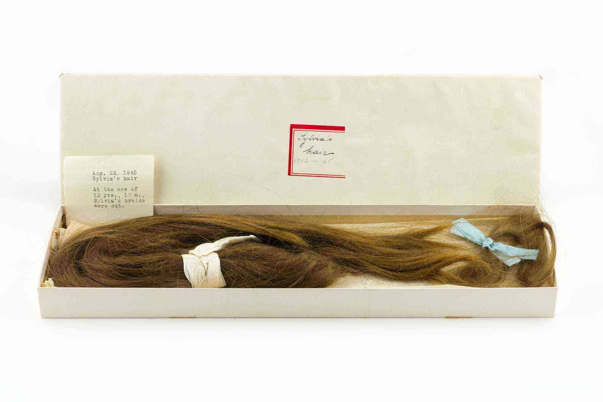 Sylvia Plath's Childhood PonytailCourtesy The LIlly LIbrary