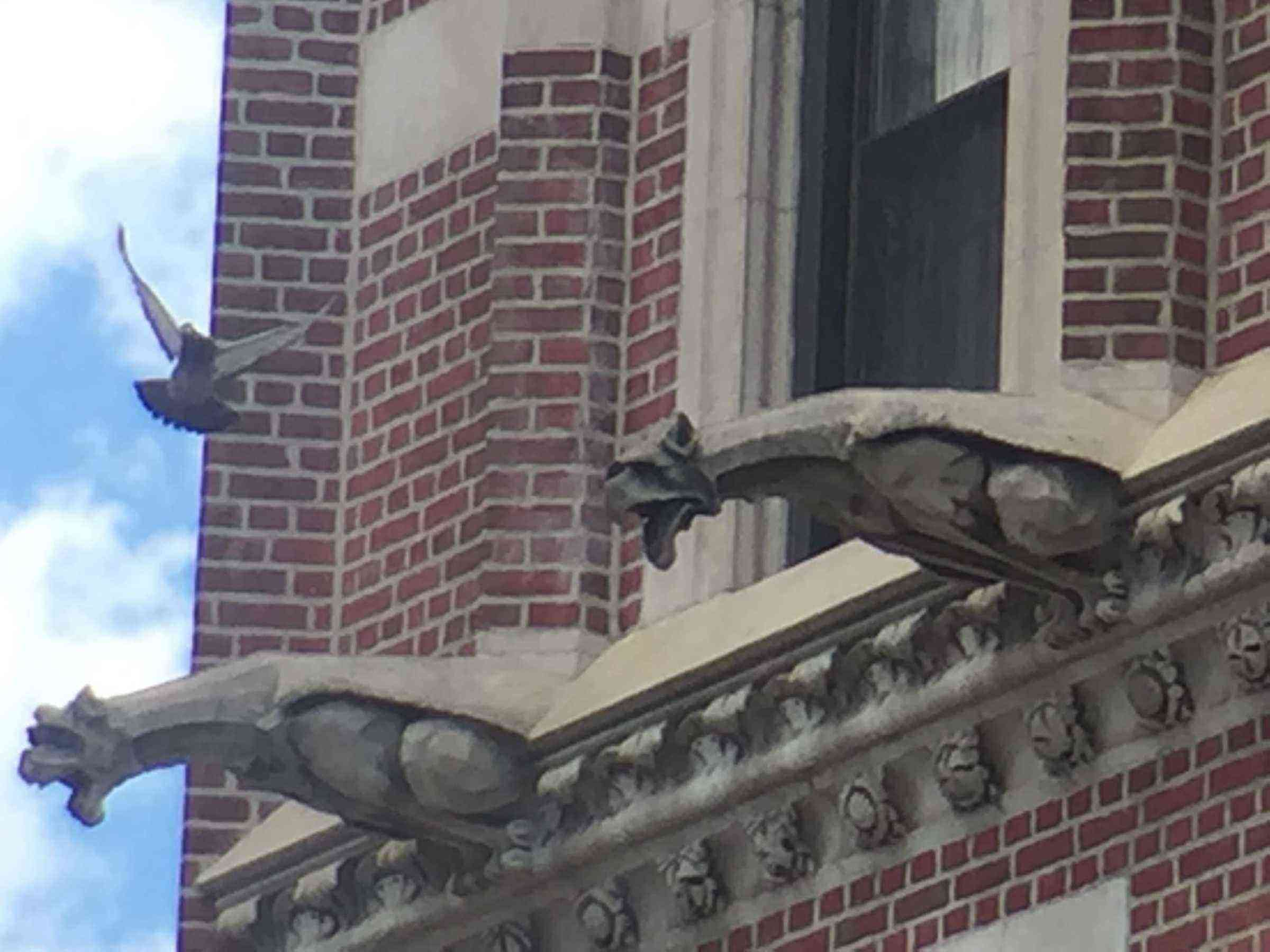 Gargoyle Hunting In New York City Fodors Travel Guide
