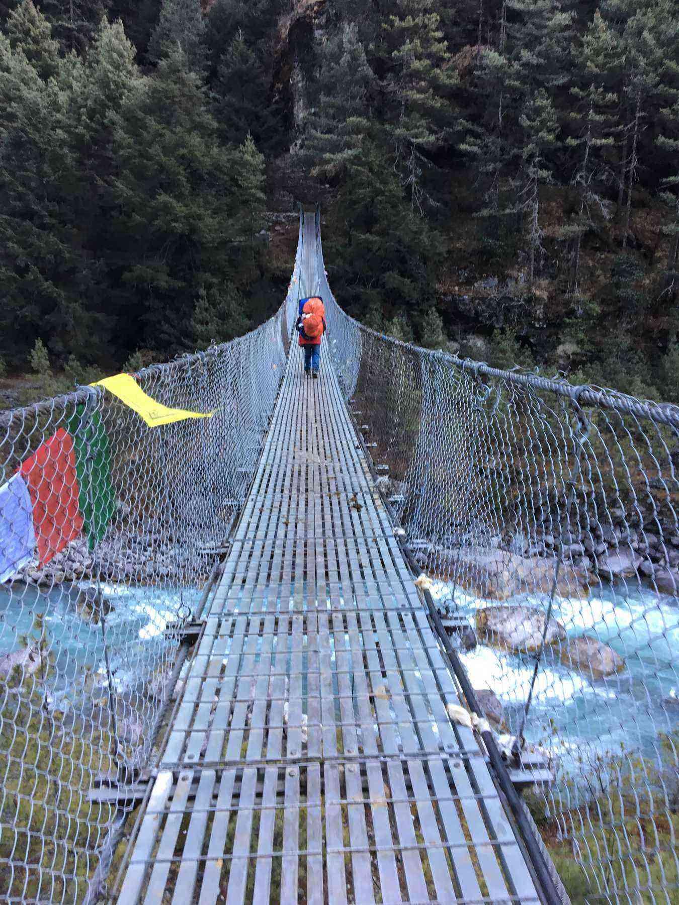 HEV-07_Photo by Kristy Alpert_suspension bridge
