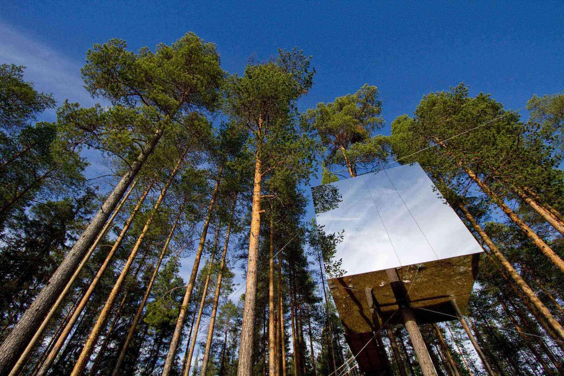 Unusual-Treehouses-Mirrorcube-1