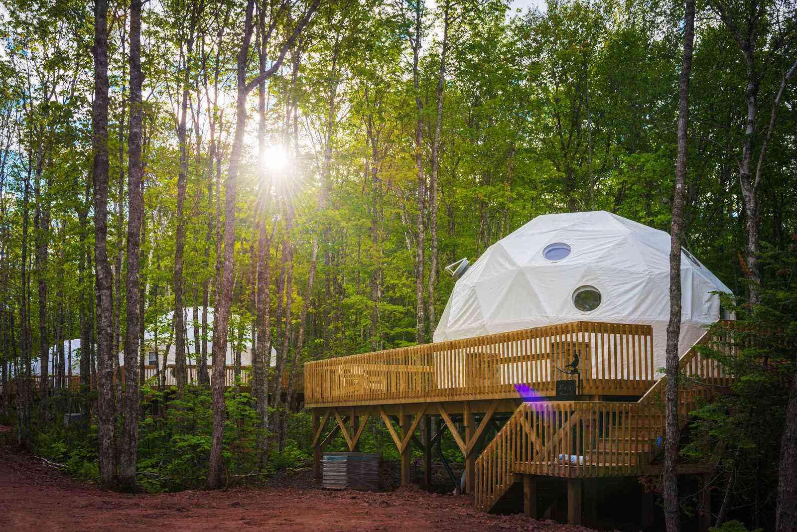 Unusual-Treehouses-TreePODS-in-Treetop-Haven-1