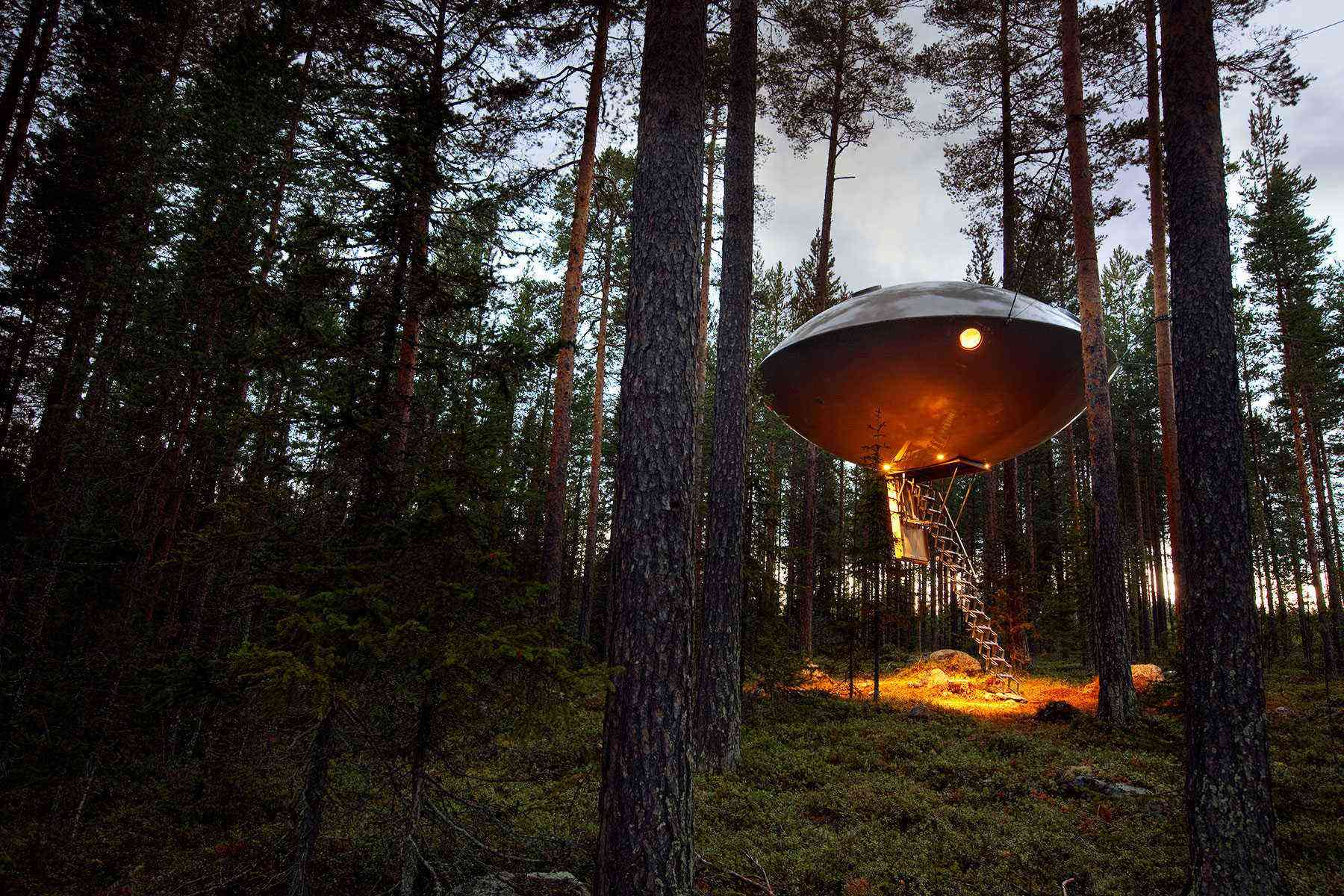 Unusual-Treehouses-hero