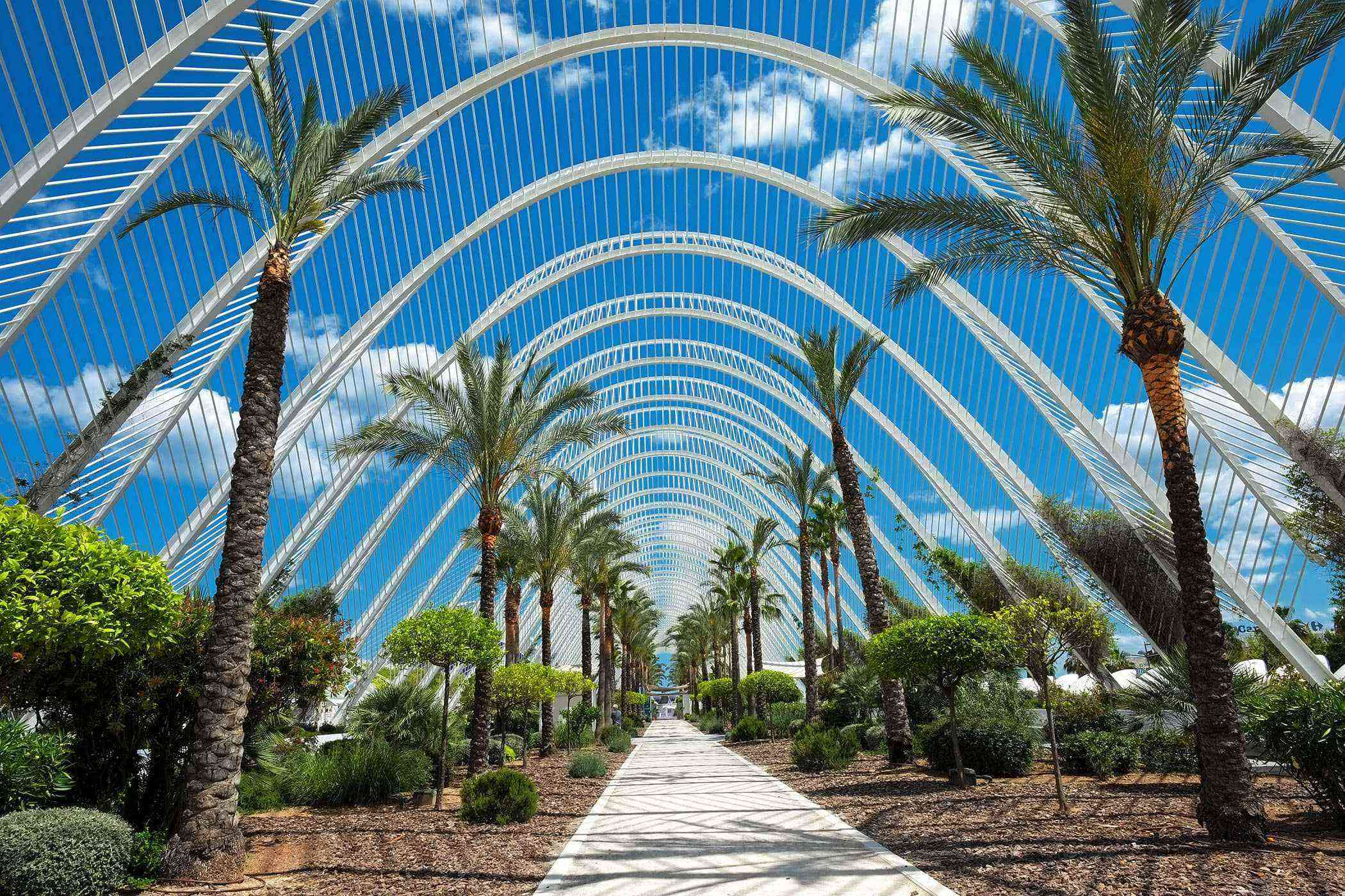 Valencia-Buildings-City-of-Arts-Sciences-2
