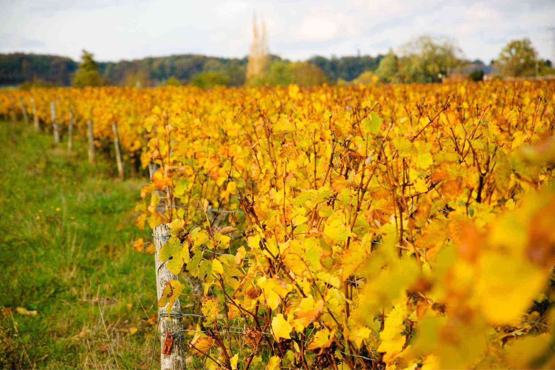 loire-valley-france