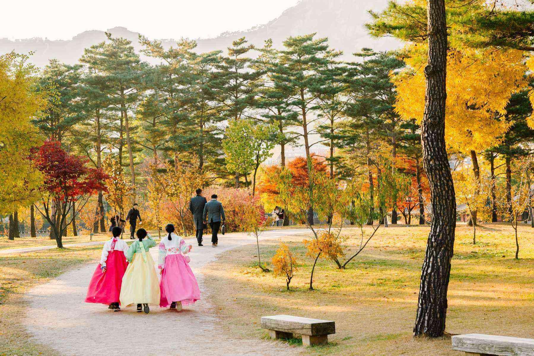 seoul-leaves