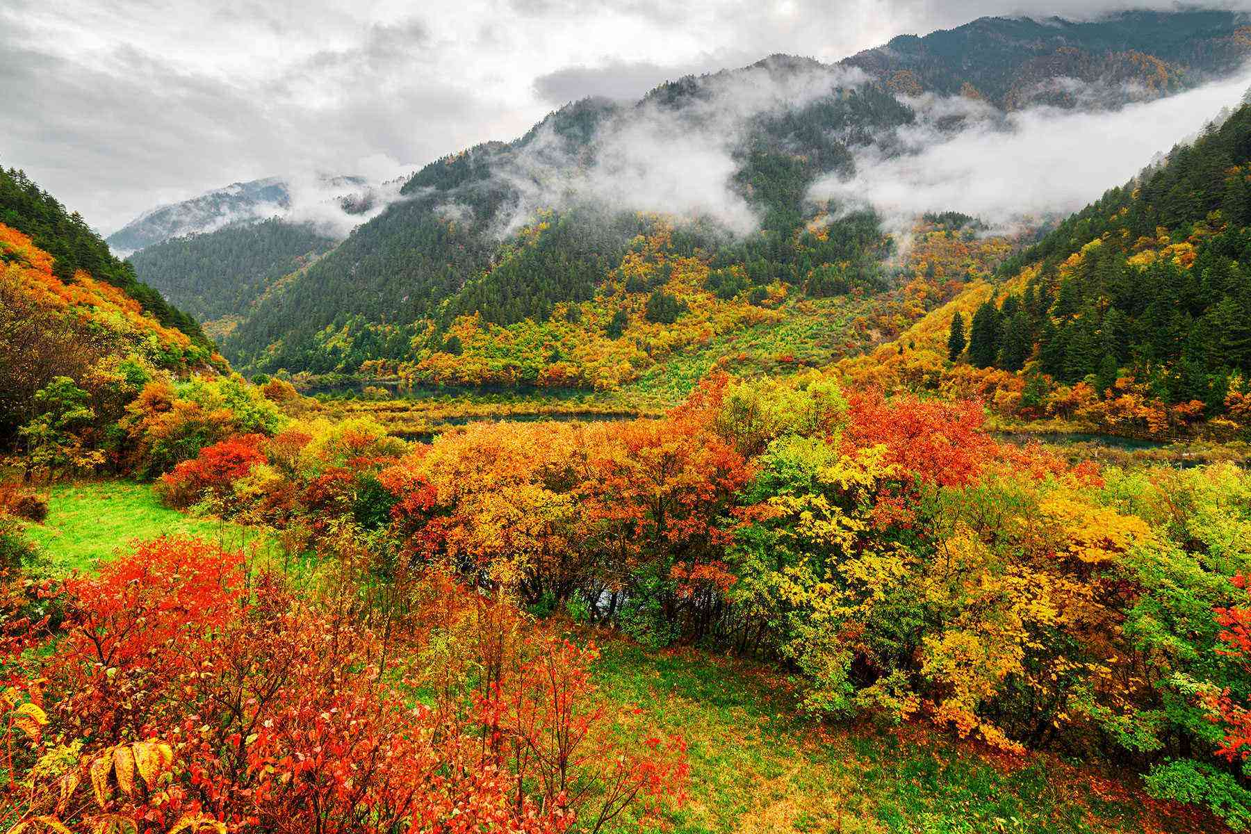 8 scenic spots for leaf peeping in china  u2013 fodors travel guide