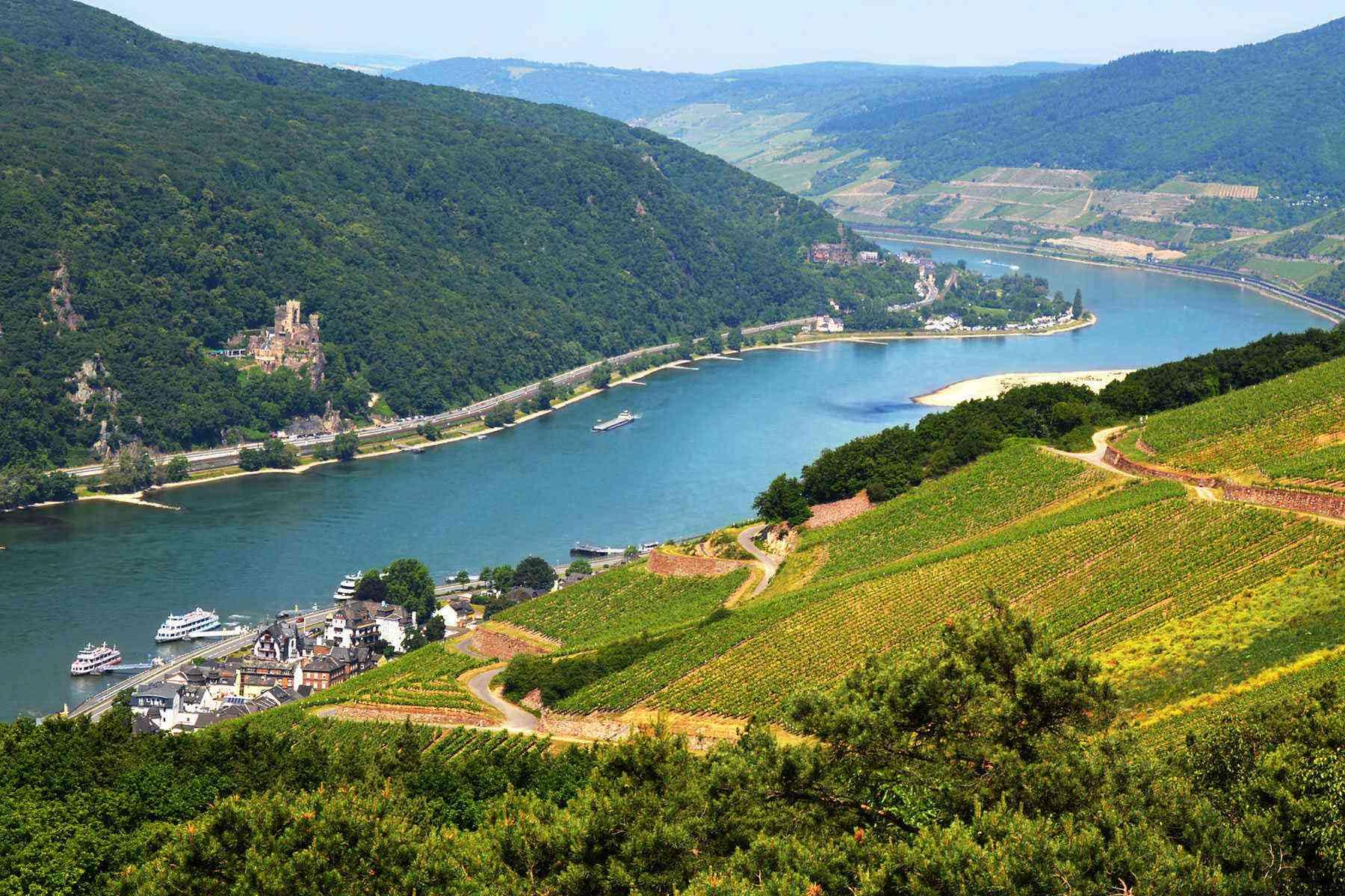 Rhine-River-Cruise-Rudesheim-1