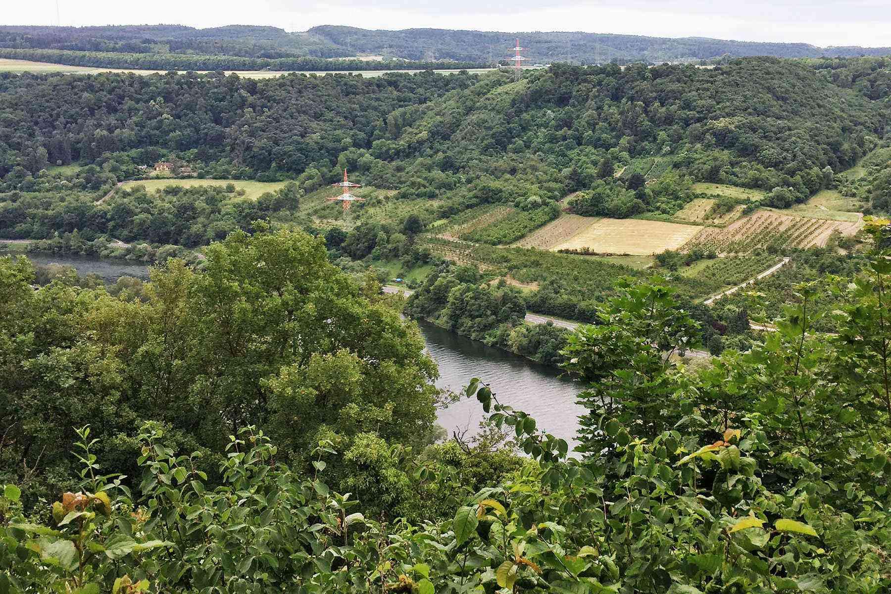 Rhine-River-Cruise-Winningen