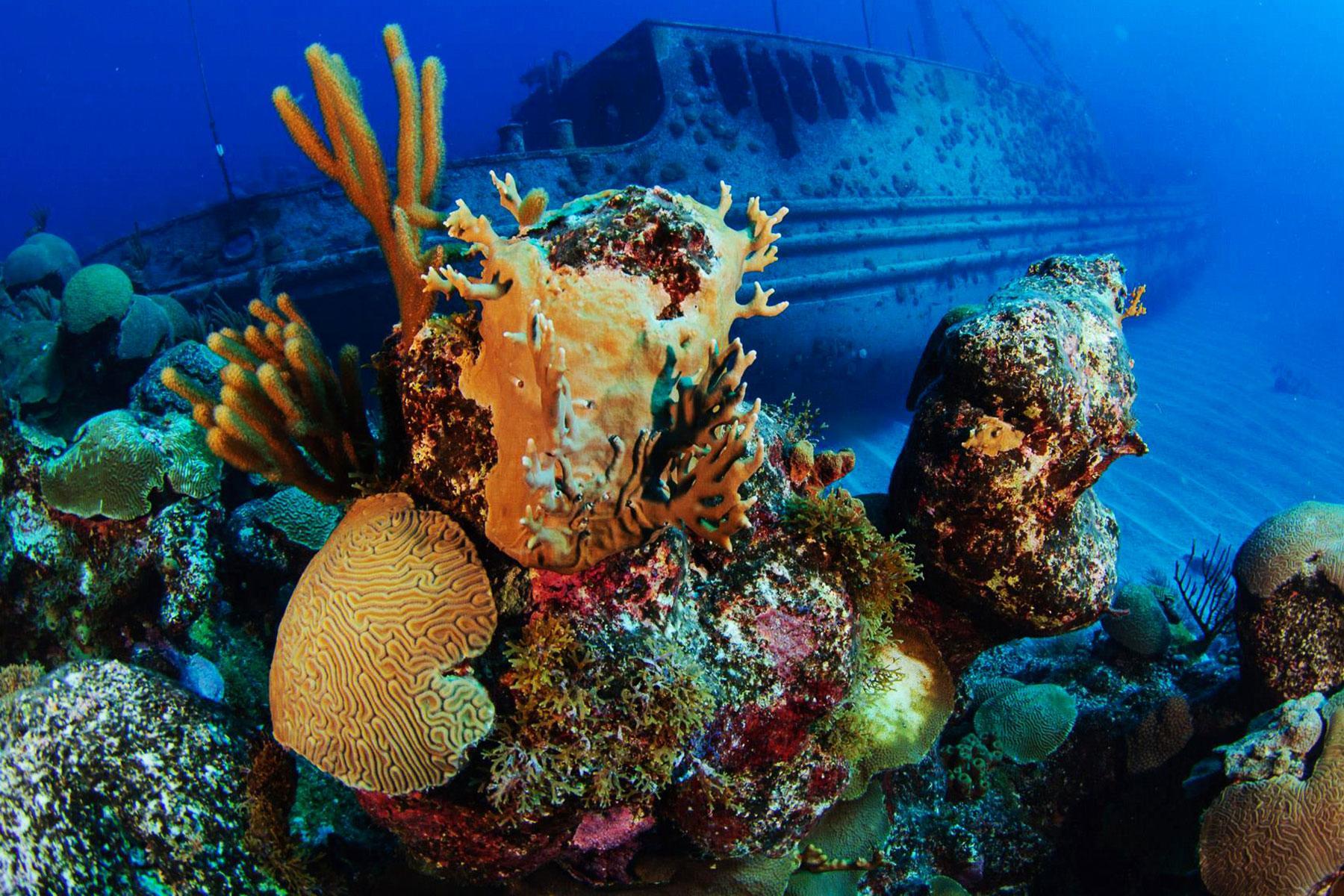10 Caribbean Shipwrecks