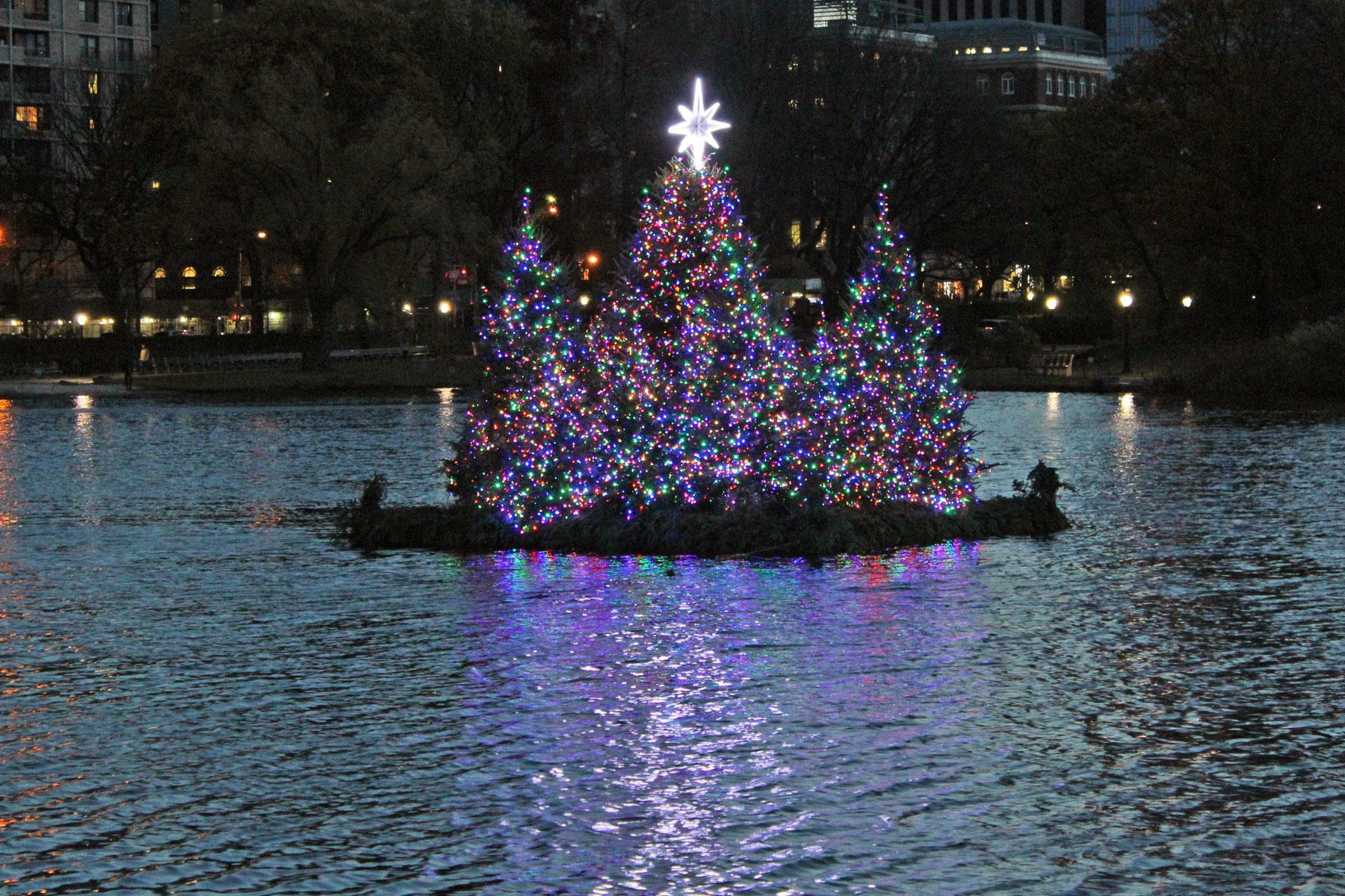 14 NYC Christmas Trees (Besides Rockefeller Center)