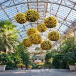BotanicalGardenEvents_LongwoodGardens_02