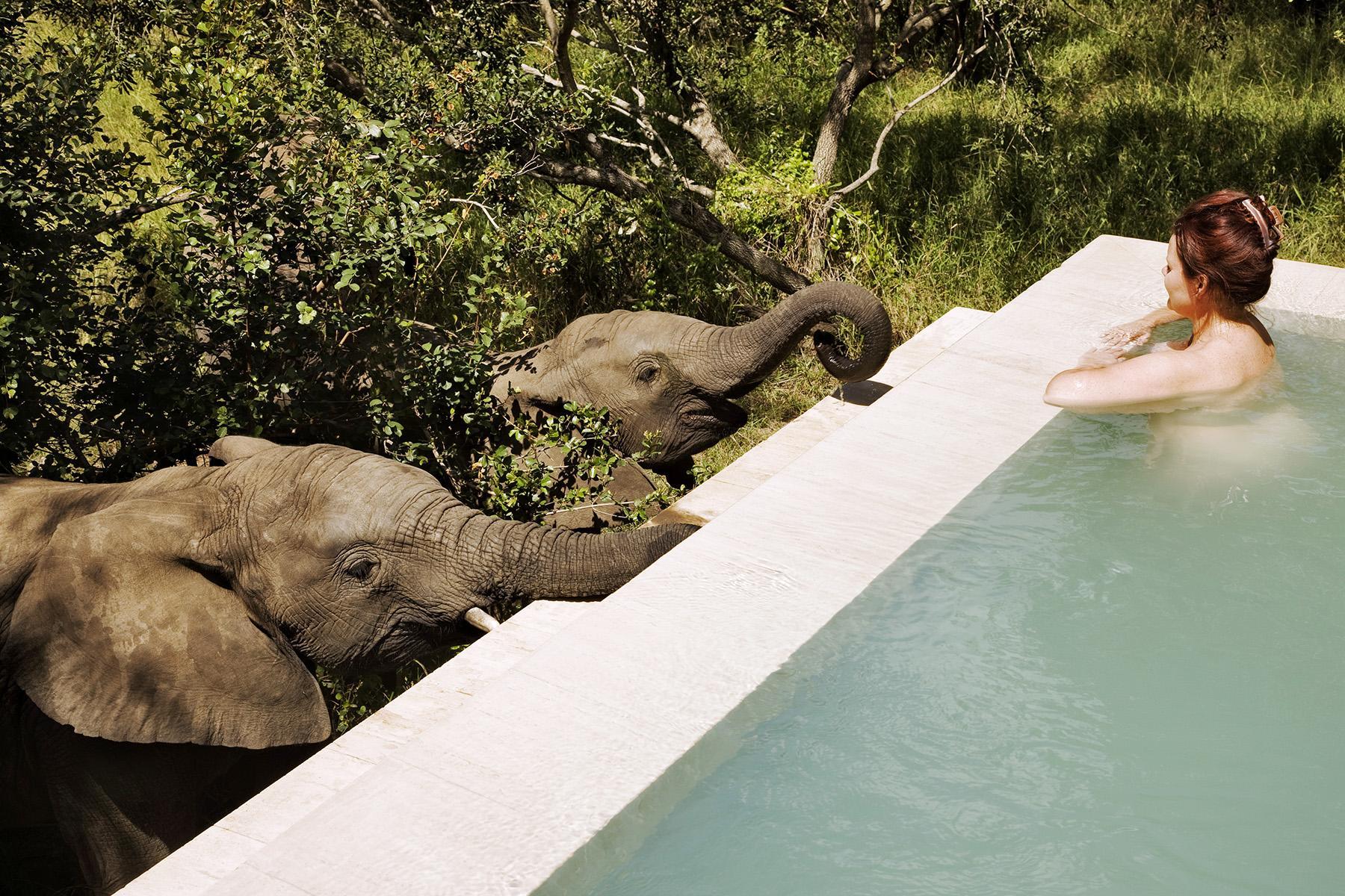 Romantic Hotels-Royal Malewane-2