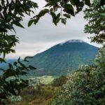 Treehouse10-Wilderness-SafarisDana-Allen