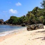 25 Ultimate Things to Do in Barbados