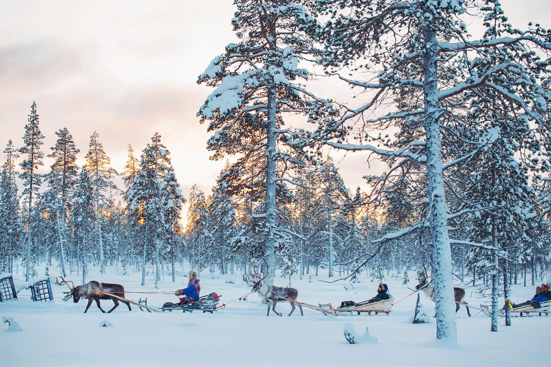 4.Unique-Hotel-Experiences-Ride-With-Reindeer-1