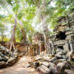 10 Things You Need to Know Before You Go to Cambodia