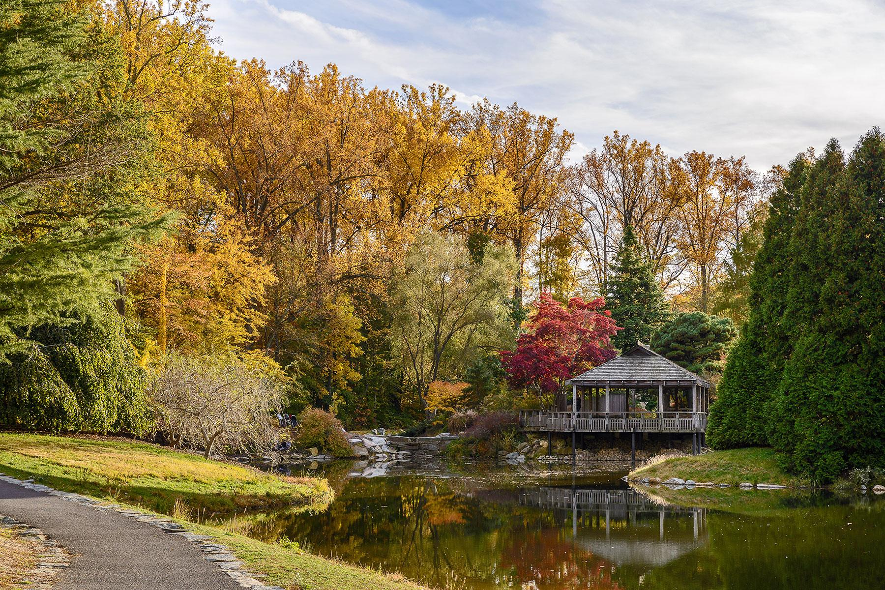 Best Free Botanical Gardens