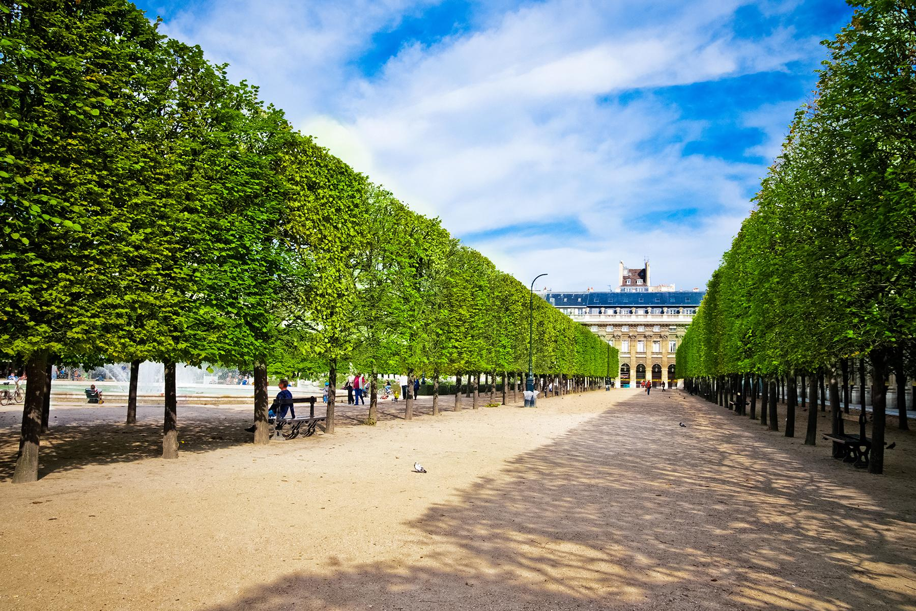 3 Enjoy the Palais Royal Gardens the 25 ultimate things to do in paris The 25 Ultimate Things to Do in Paris 3 Enjoy the Palais Royal Gardens