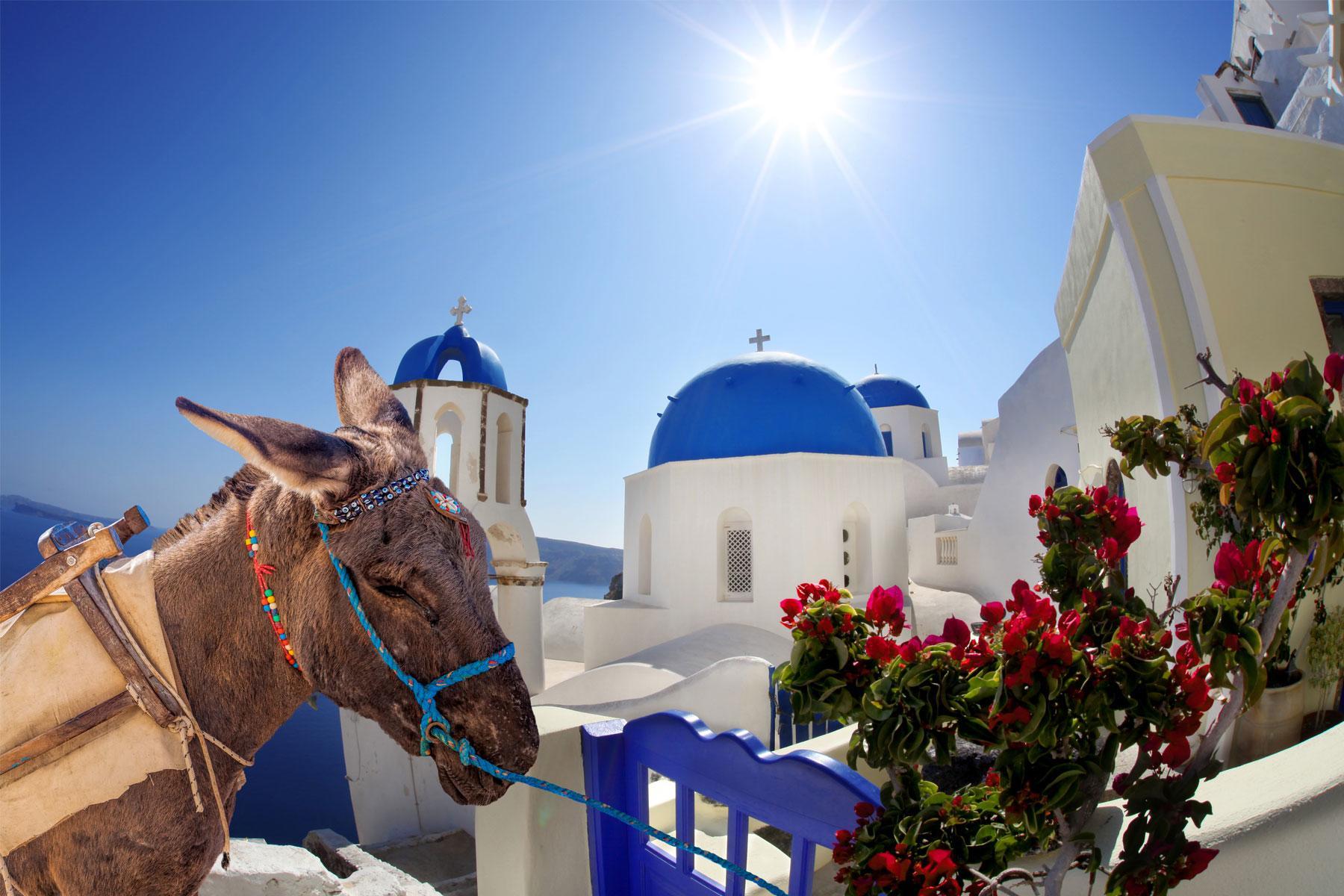 GreeceDonkey3