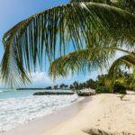How to Fly Business Class to The Caribbean for the Price of An Economy Ticket