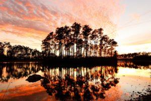 01_2_UNESCO sites to Visit Before It's Too Late_Everglades National Park_shutterstock_567944398