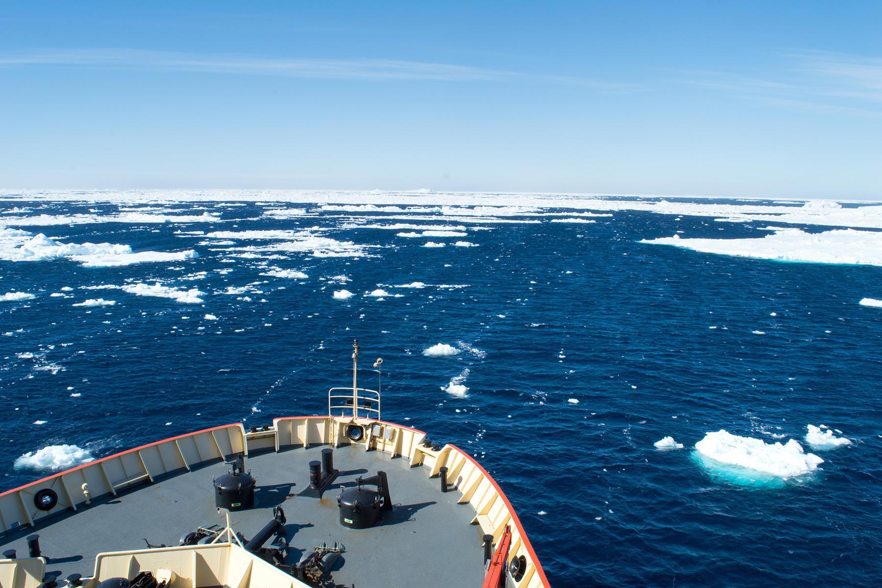 1_Antartica101_BookSmallShip_shutterstock_1032336601_1