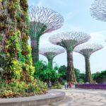 5 Rules You Must Abide By When Traveling to Singapore