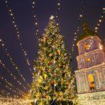The 14 Most Beautiful Christmas Trees Around the World